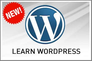 The Basics Of WordPress