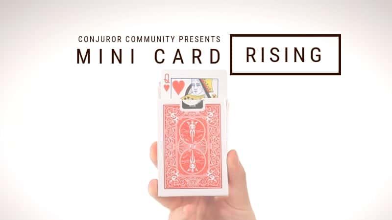 Mini Card Rise